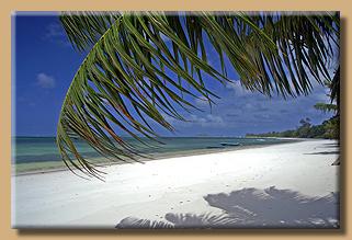 Grand Anse am Morgen