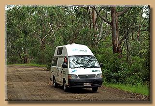 Unterwegs im Koala Kingdom