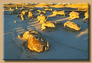 Bisti Wilderness Area