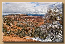 Verschneiter Bryce Canyon [1]