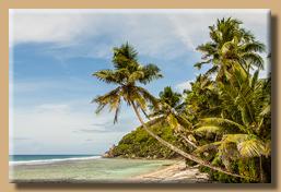 Reisebericht Seychellen - Traumstrände und tropische Vegetation - 2013