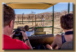 Auf dem Weg zu den Geparden